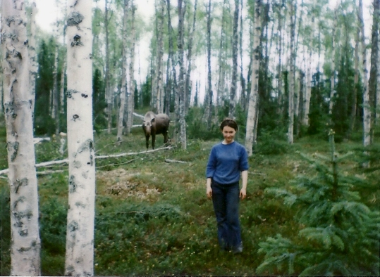 1981 - Our Cabin Site on Caribou Island, Skilak Lake!